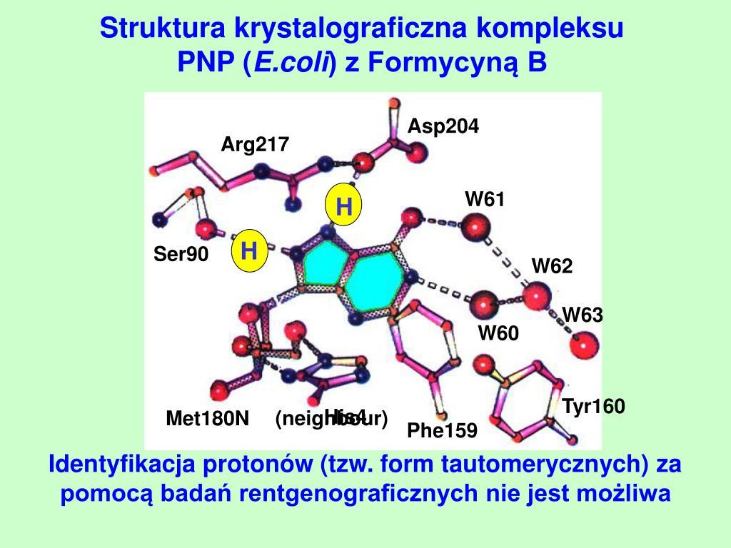 Struktura krystalograficzna kompleksu PNP (