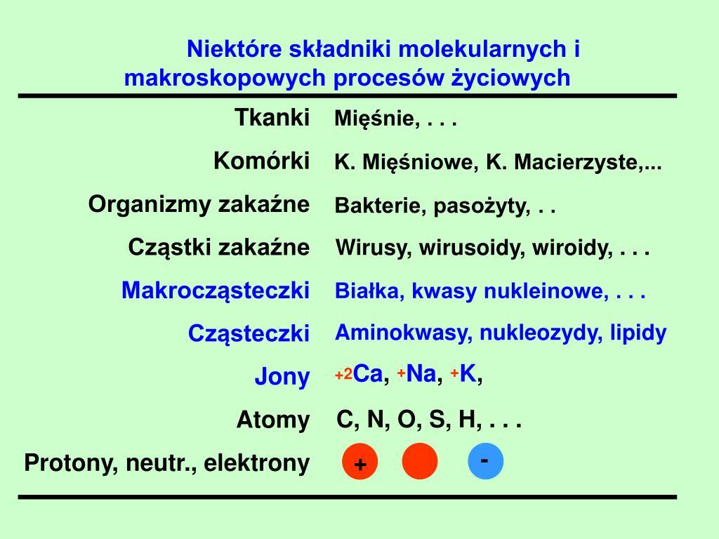 Niektóre składniki molekularnych i makroskopowych procesów życiowych