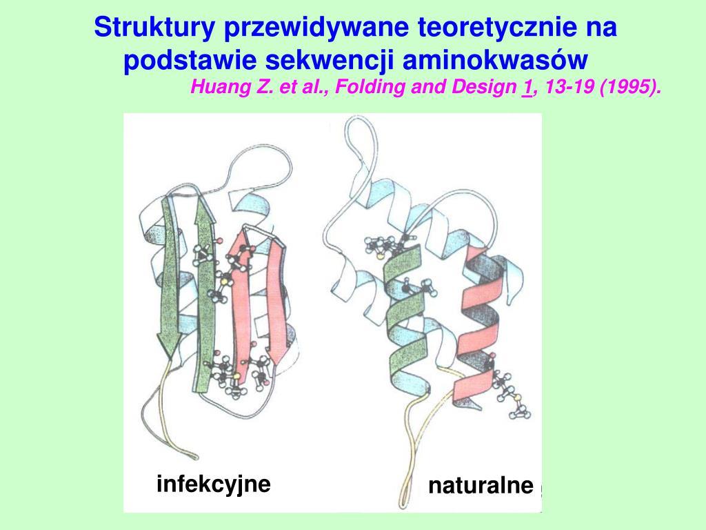 Struktury przewidywane teoretycznie na podstawie sekwencji aminokwasów