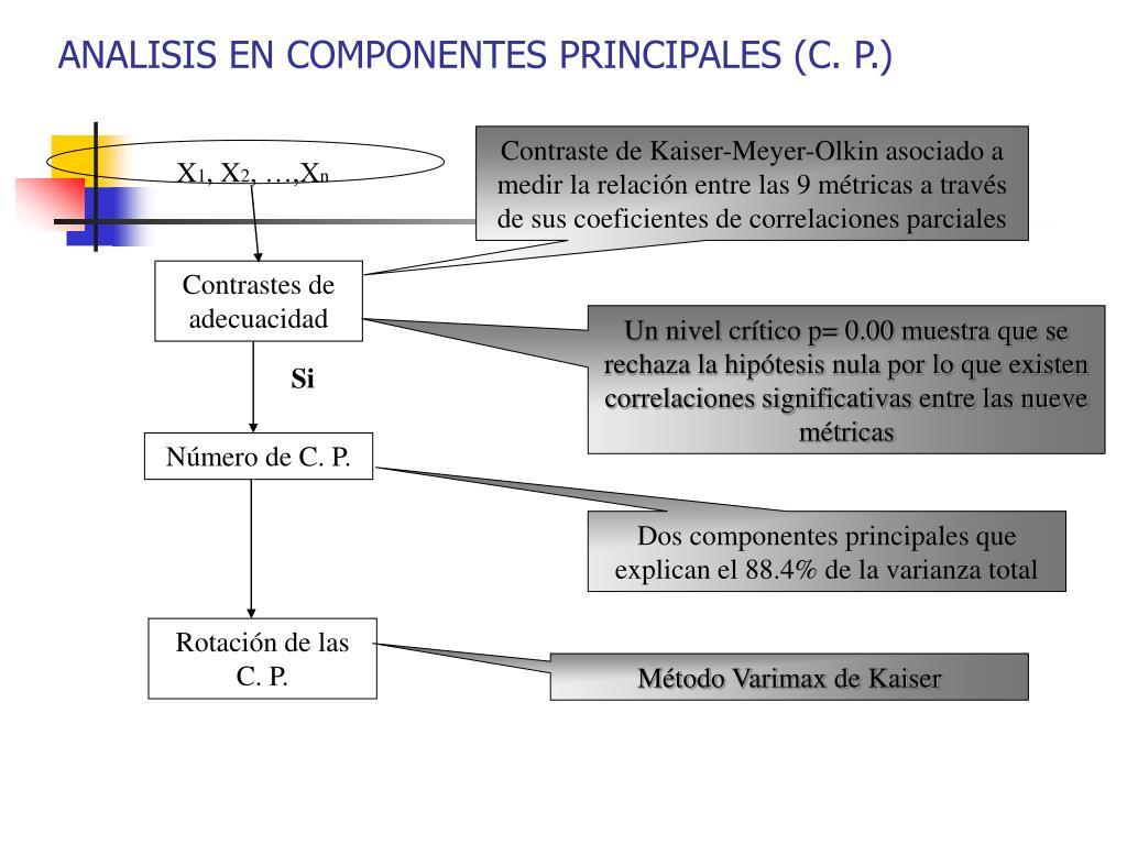 ANALISIS EN COMPONENTES PRINCIPALES (C. P.)