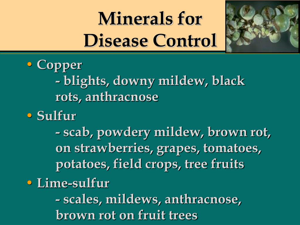 Minerals for