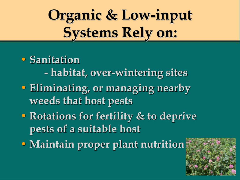 Organic & Low-input Systems Rely on: