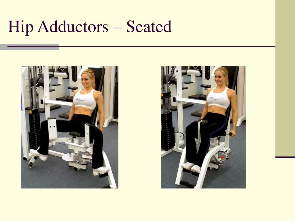 Hip Adductors – Seated
