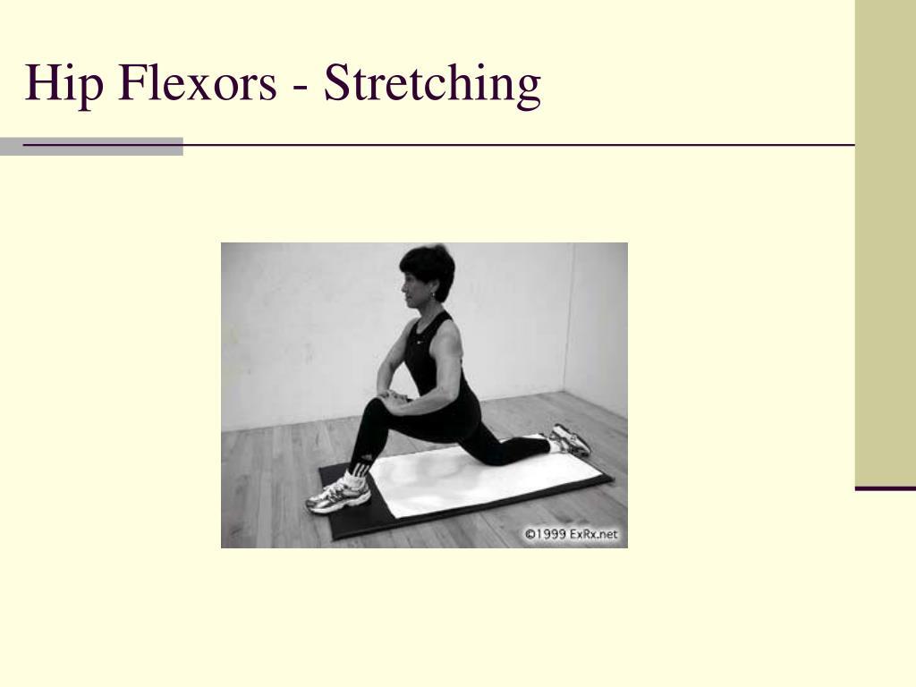 Hip Flexors - Stretching