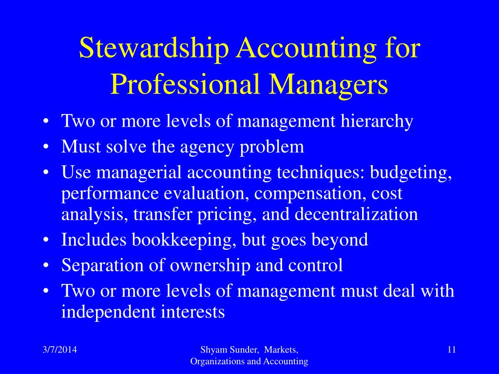 Stewardship Accounting for Professional Managers