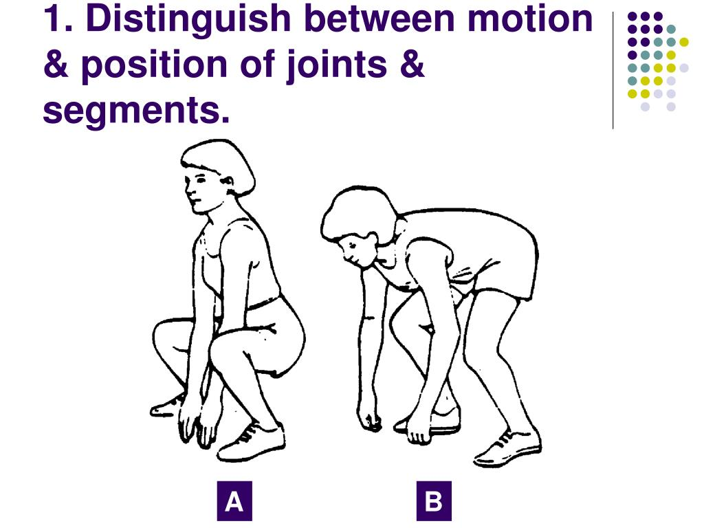 1. Distinguish between motion & position of joints & segments.