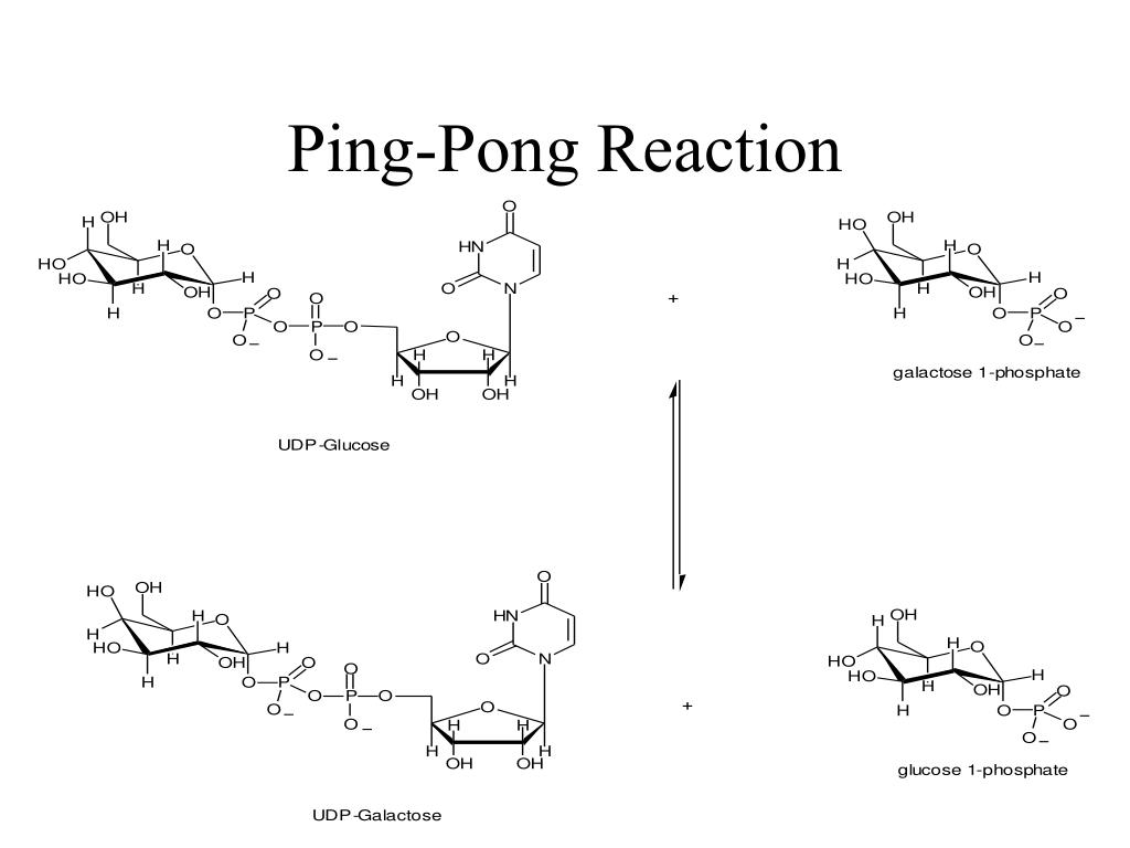 Ping-Pong Reaction