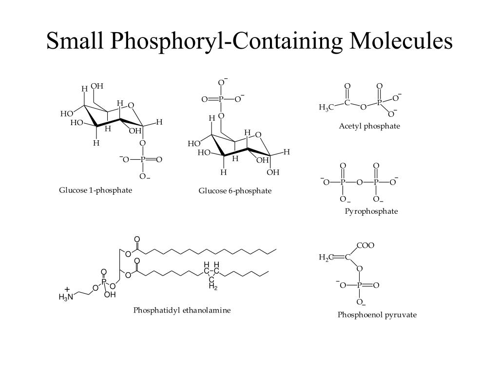 Small Phosphoryl-Containing Molecules