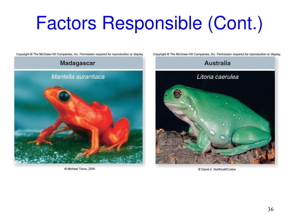 Factors Responsible (Cont.)