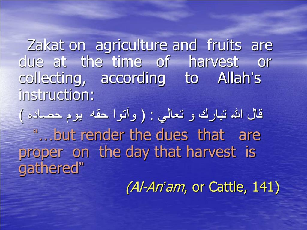Zakat on  agriculture and  fruits  are due  at   the  time   of    harvest    or collecting,   according    to    Allah