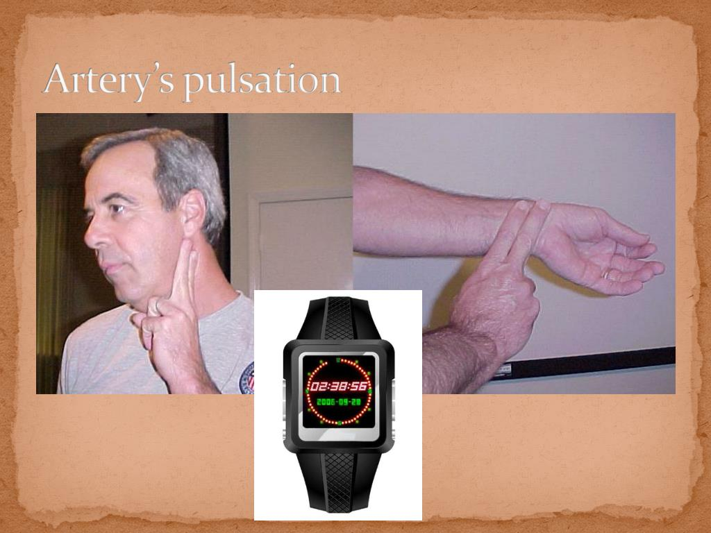 Artery's pulsation