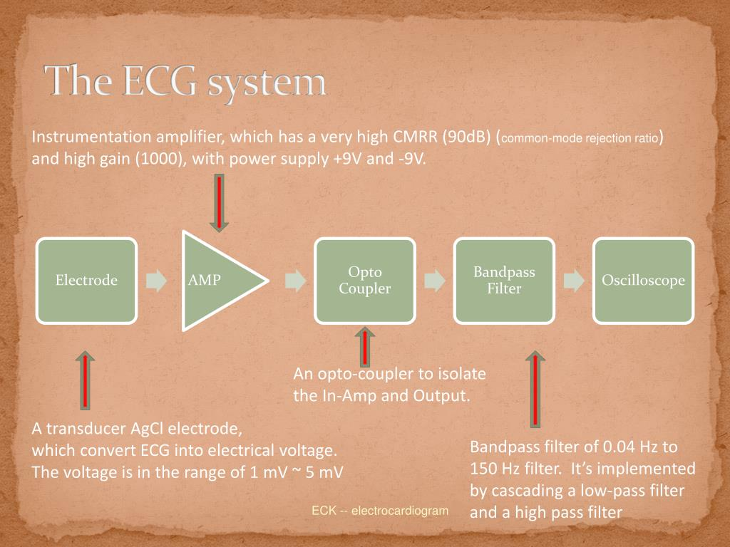 The ECG system
