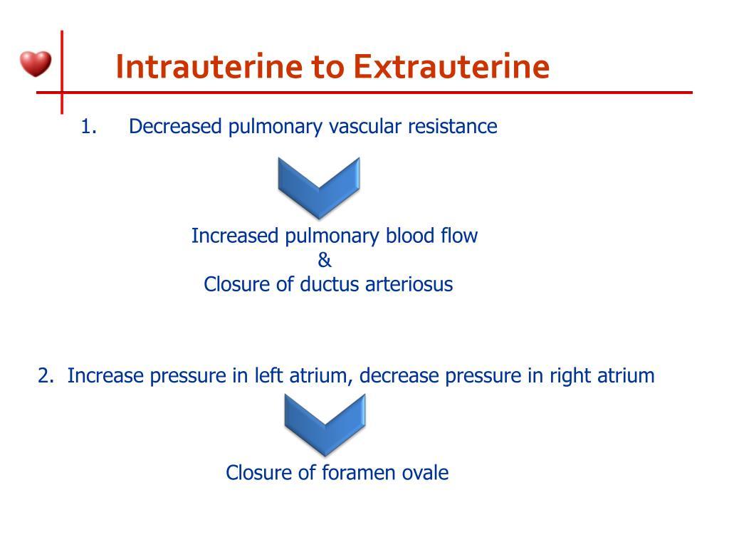 Intrauterine to Extrauterine