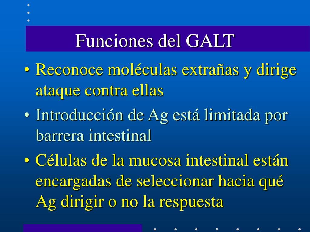 Funciones del GALT