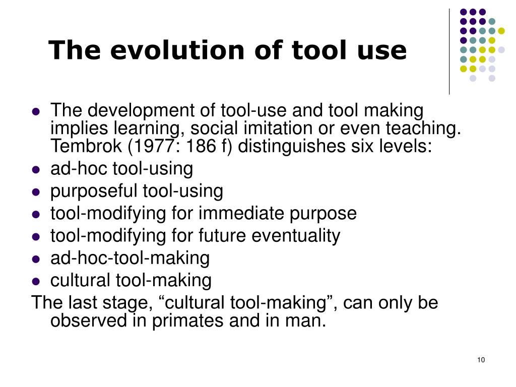 The evolution of tool use
