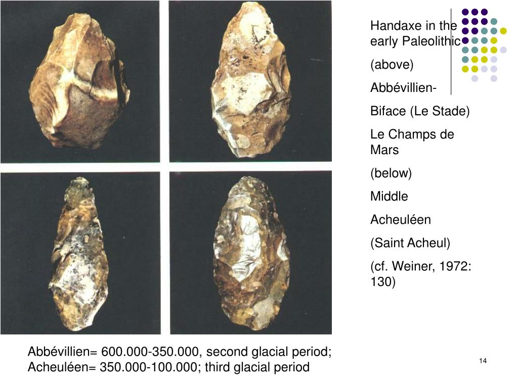 Handaxe in the early Paleolithic