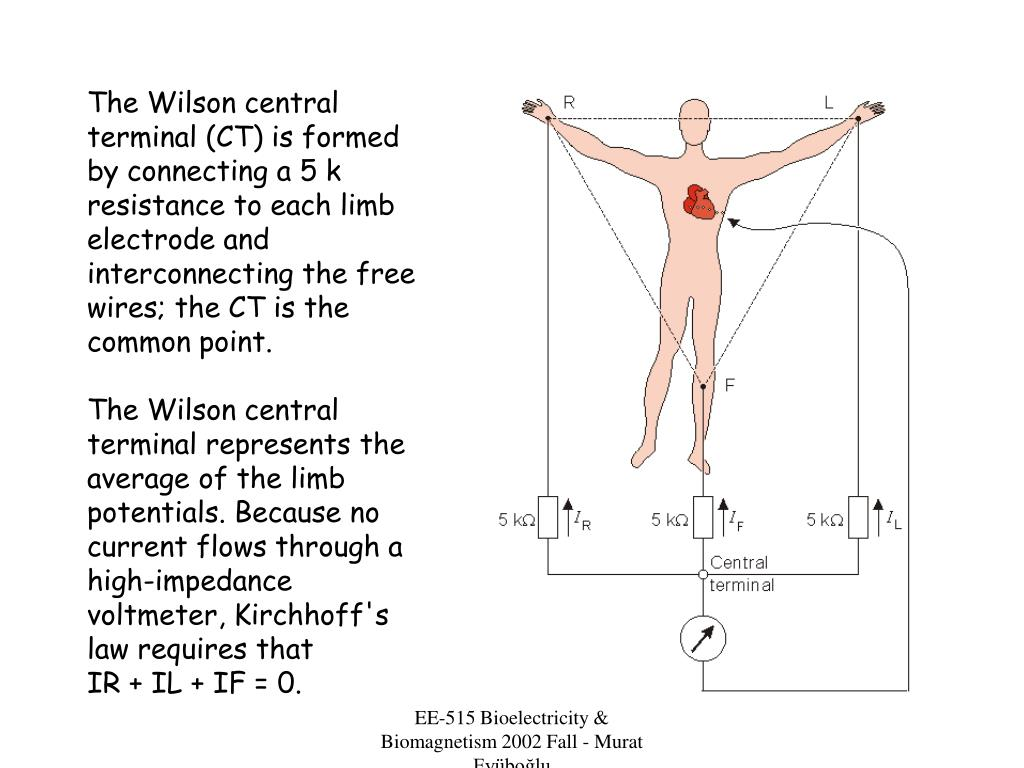 The Wilson central terminal (CT) is formed by connecting a 5 k resistance to each limb electrode and interconnecting the free wires; the CT is the common point.