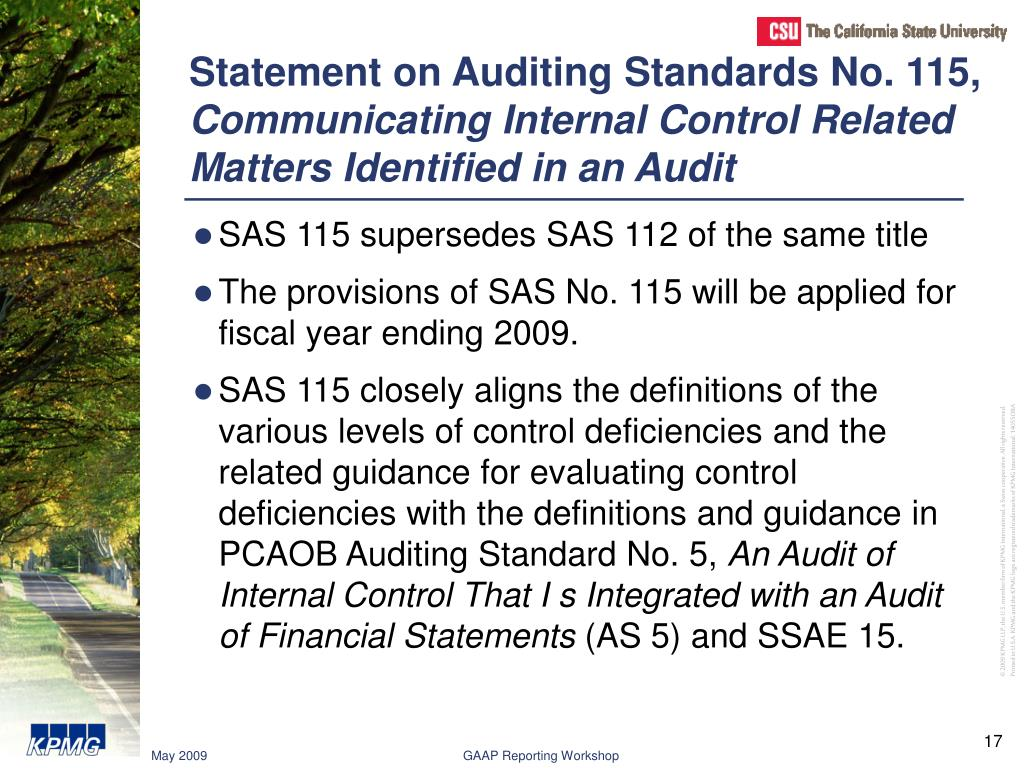 Statement on Auditing Standards No. 115,