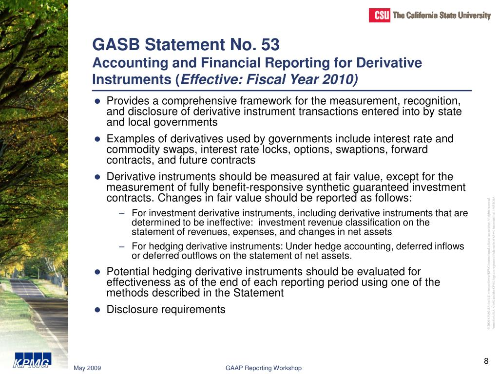 GASB Statement No. 53