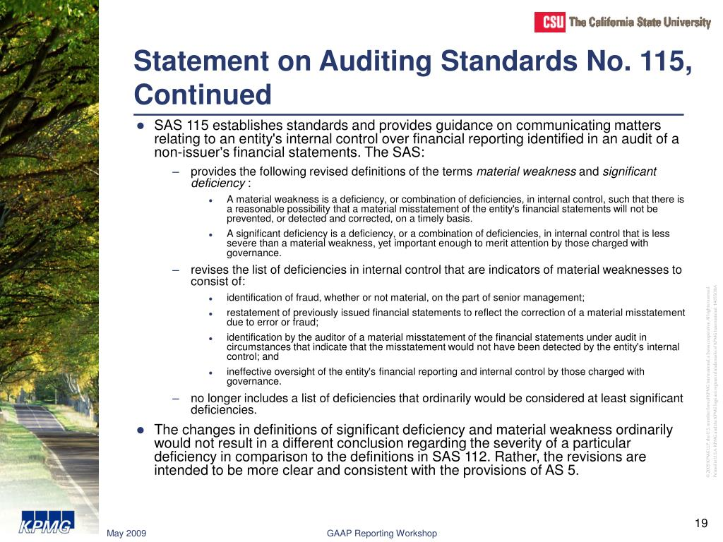 Statement on Auditing Standards No. 115, Continued