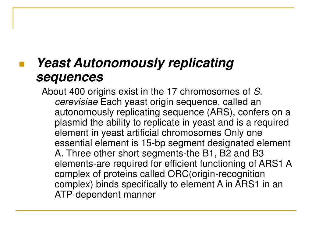 Yeast Autonomously replicating sequences