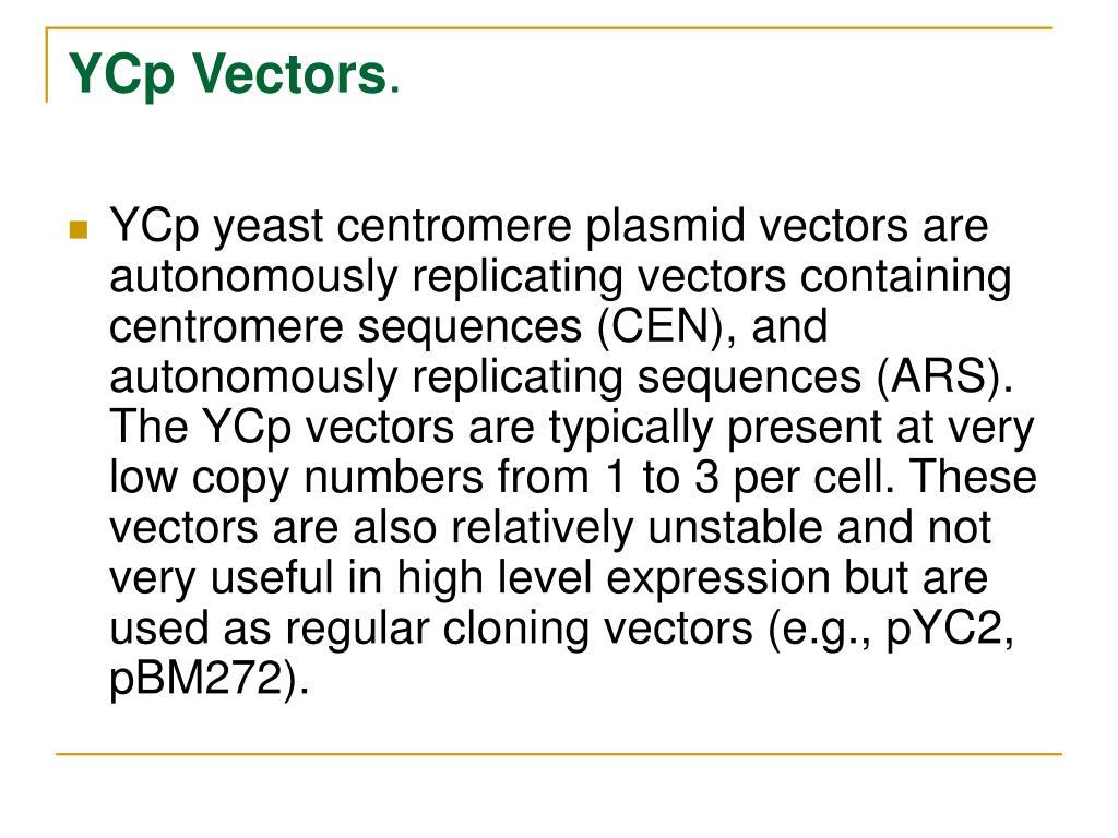 YCp Vectors