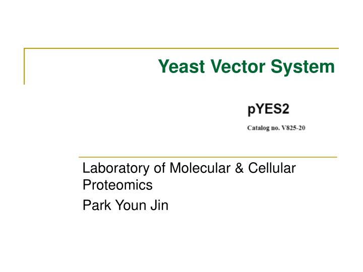 Yeast vector system l.jpg
