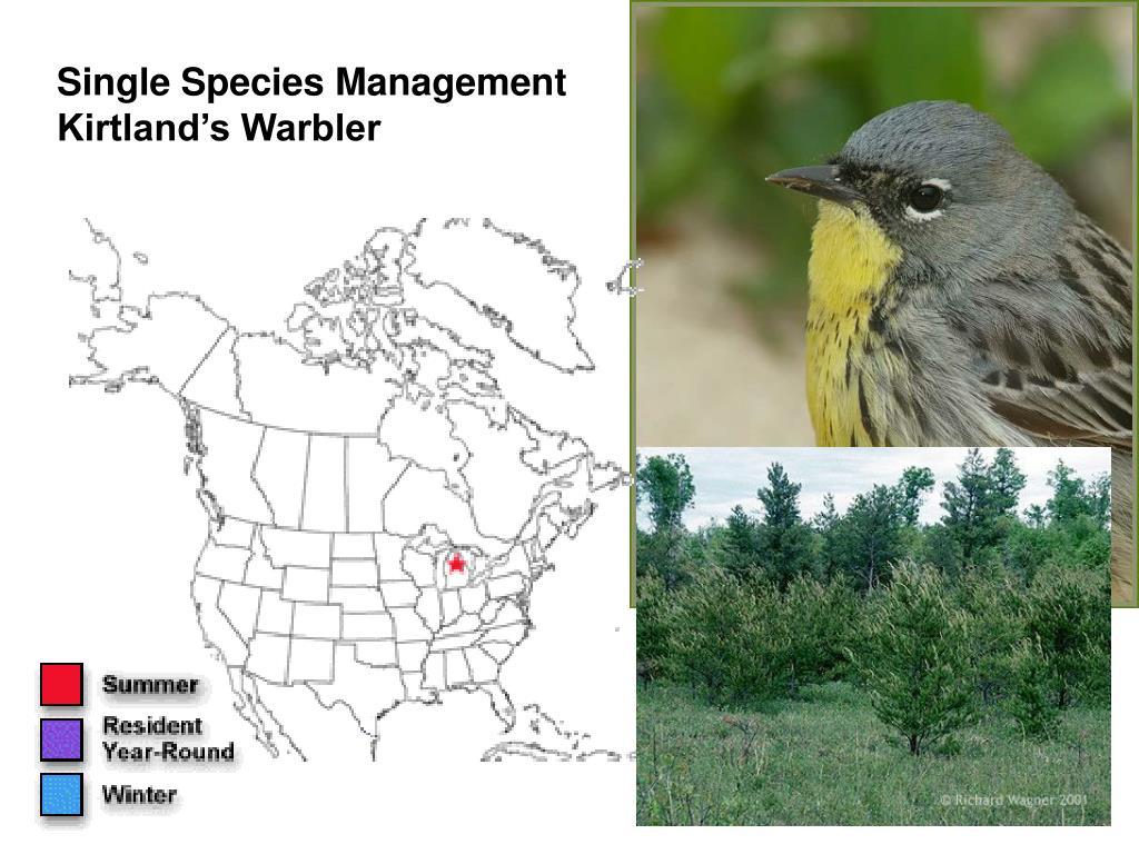 Single Species Management