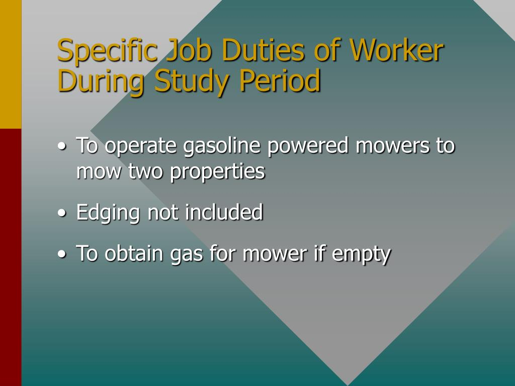 Specific Job Duties of Worker During Study Period