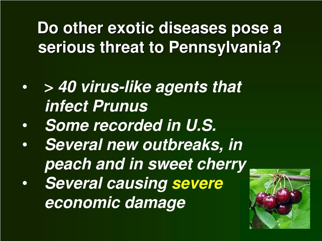Do other exotic diseases pose a serious threat to Pennsylvania?