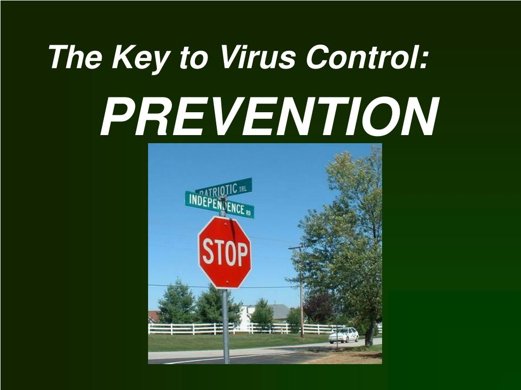 The Key to Virus Control: