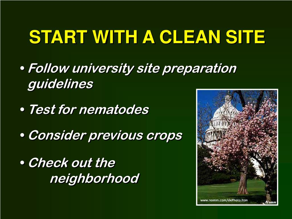 START WITH A CLEAN SITE
