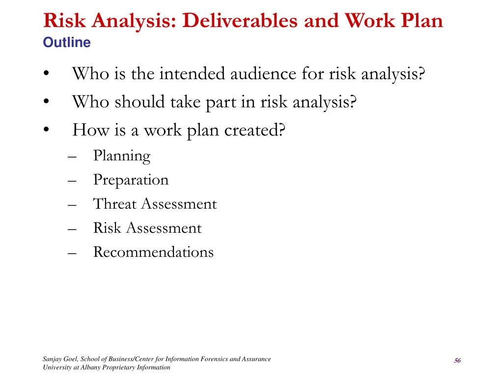 Risk Analysis: Deliverables and Work Plan