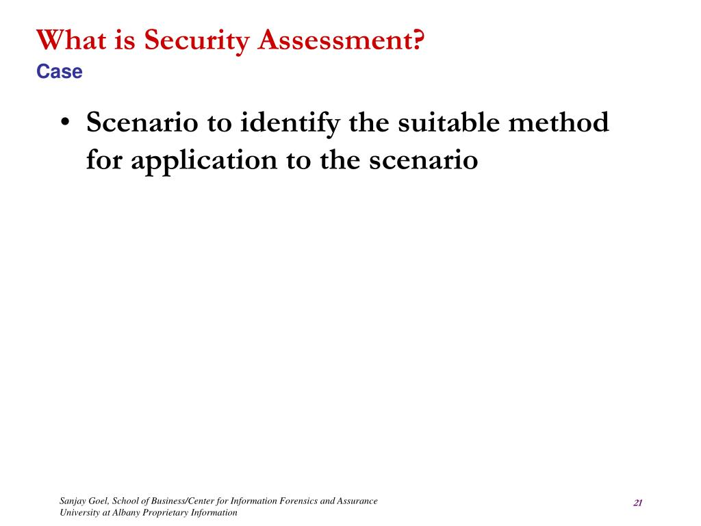 What is Security Assessment?