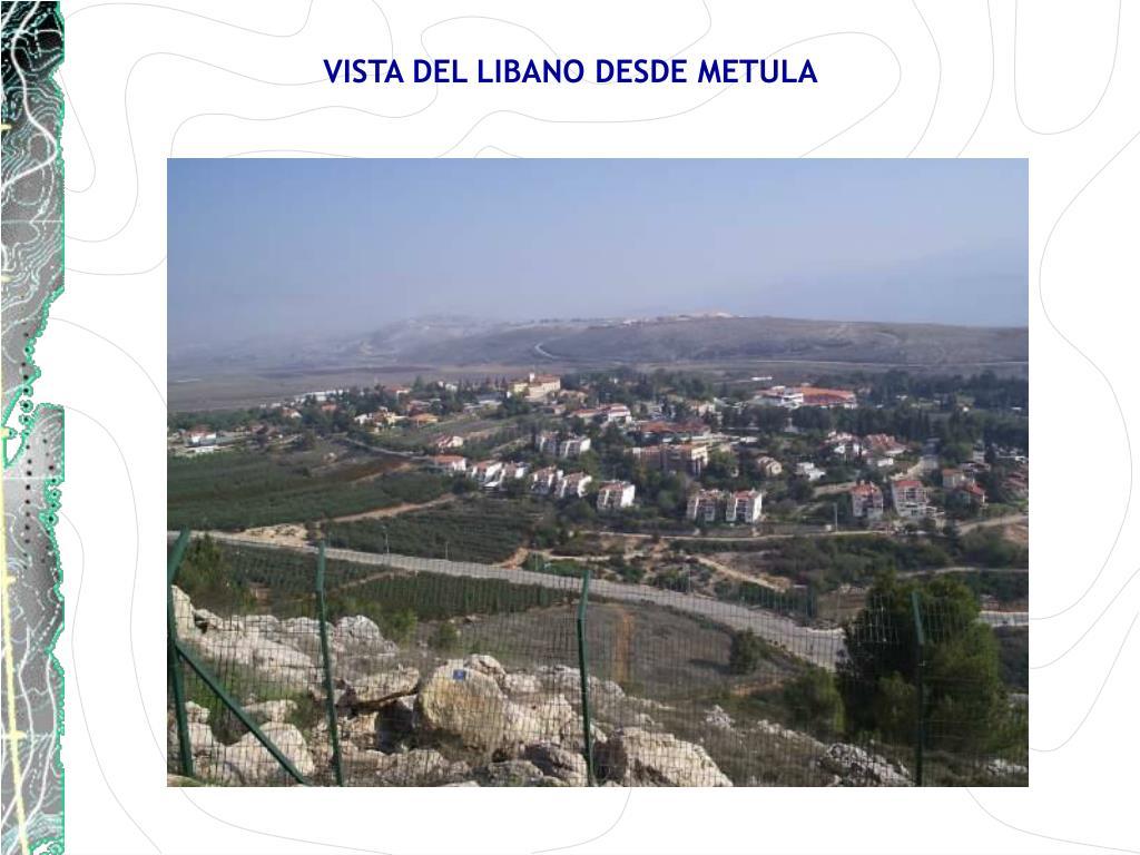 VISTA DEL LIBANO DESDE METULA