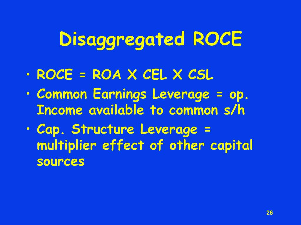 Disaggregated ROCE