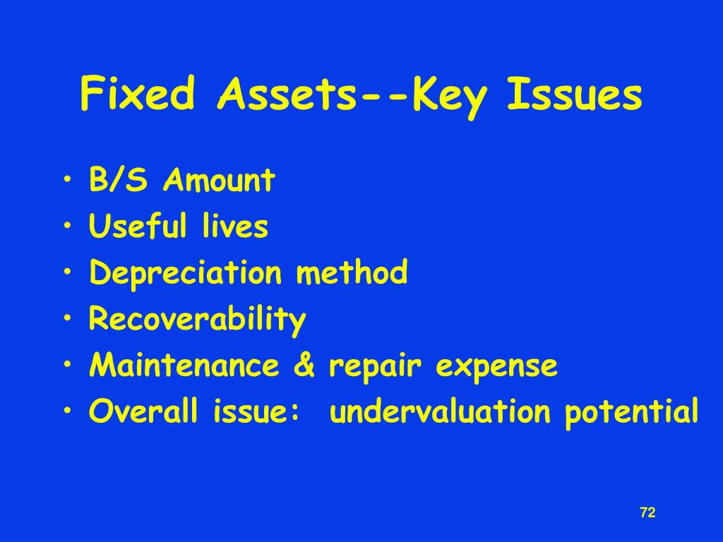 Fixed Assets--Key Issues