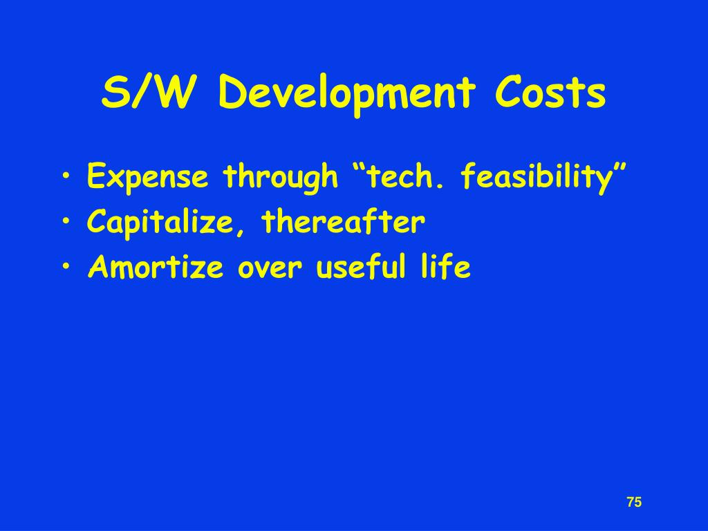 S/W Development Costs
