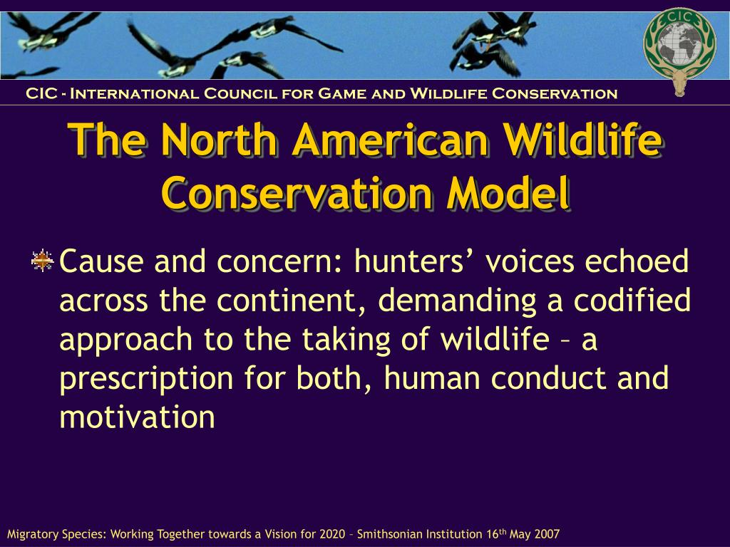 The North American Wildlife Conservation Model