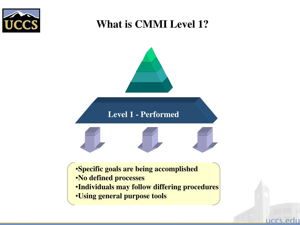 What is CMMI Level 1?