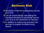 business risk