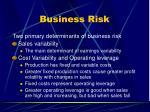 business risk48