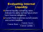 evaluating internal liquidity