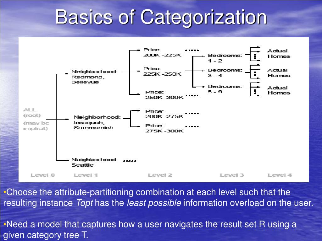 Basics of Categorization