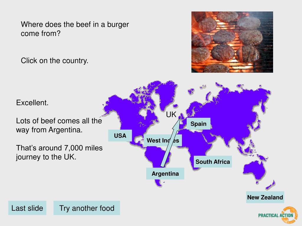 Where does the beef in a burger come from?