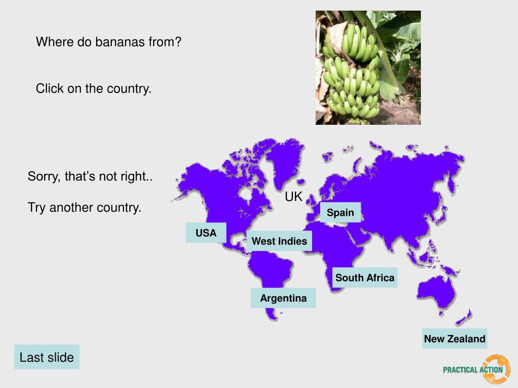 Where do bananas from?