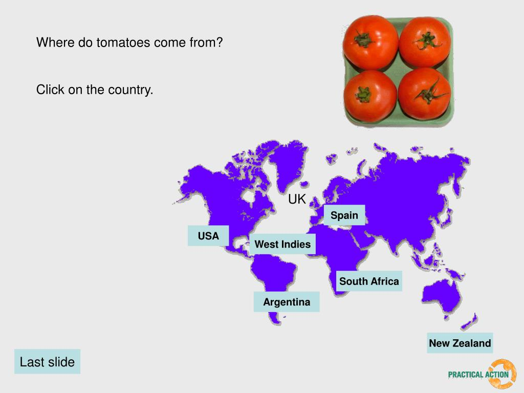 Where do tomatoes come from?