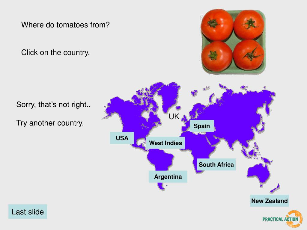 Where do tomatoes from?