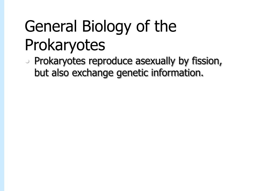 General Biology of the Prokaryotes