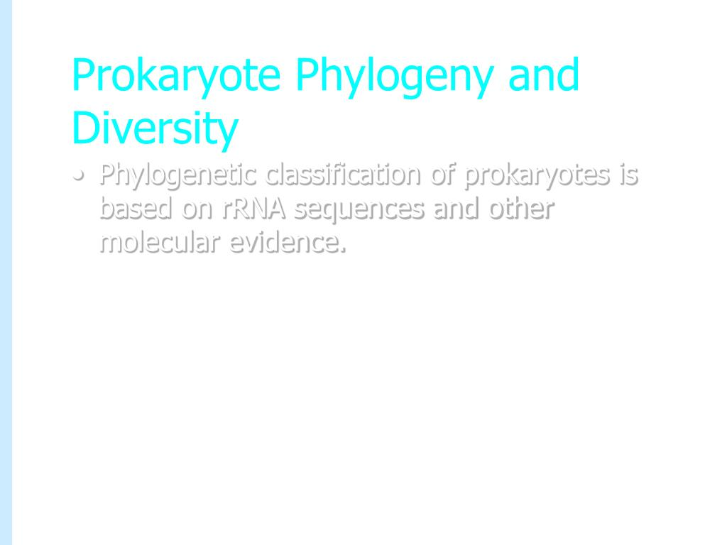 Prokaryote Phylogeny and Diversity